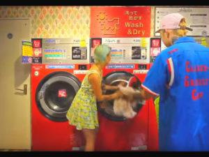 ミュージックビデオロケ地、コインランドリー、ゆるふわギャング「Dippin' Shake」